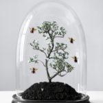 Биозащита для растений